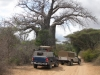 Baobab country