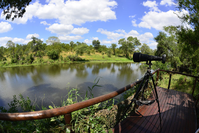 machampane wilderness camp bird watching