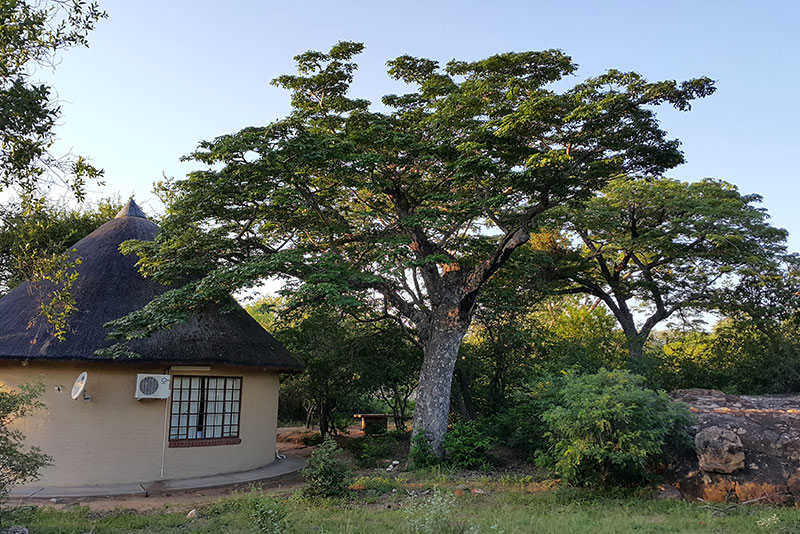 lodges near kruger national park