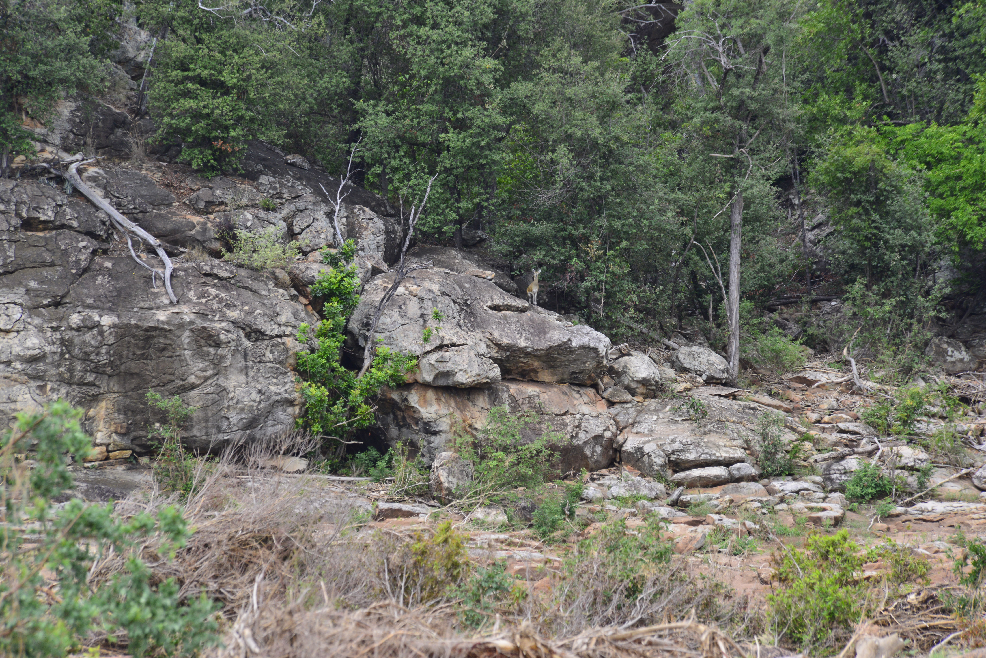 Mutale Falls Rock Face